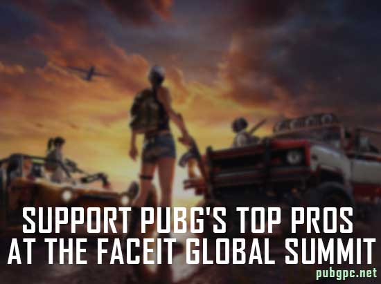 Showing Your Support to PUBG's Top Pros at The Faceit Global Summit In-game Items