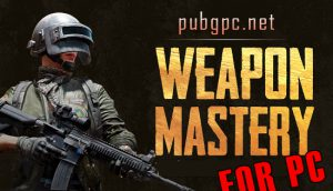 PUBG Weapon Mastery For PC