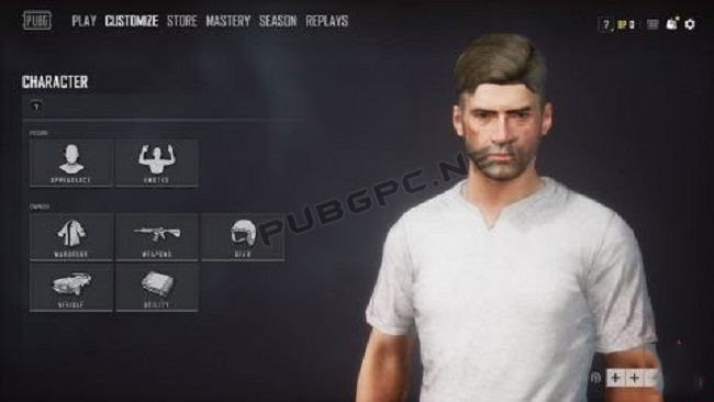 New Character UI In PUBG PC 4