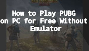 Play PUBG on PC without emulator